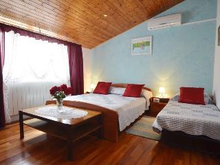 Apartman Kiko - Rovinj vacation rentals
