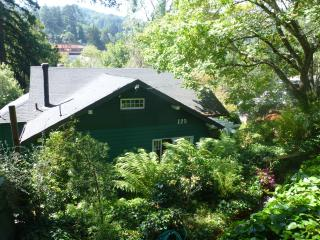 Charming 2 bedroom House in Mill Valley - Mill Valley vacation rentals