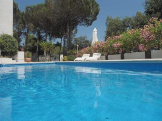 Nice Studio with Internet Access and Central Heating - Espira de l'Agly vacation rentals