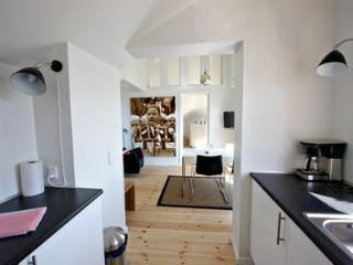 Spacious apartment with high ceilings. - 2367 - Aarhus vacation rentals