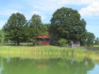 Cottage; backyard pond, many hummingbirds up close - Kentucky vacation rentals