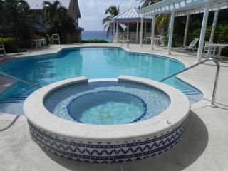 Amazing fully refurbished 2 bed 2 bath condo - West Bay vacation rentals