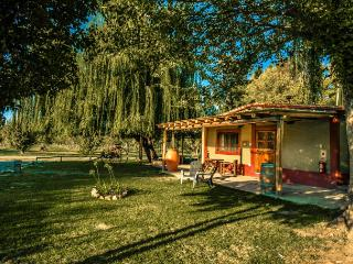 Villas in the heart of the mendoza wine country - Province of Mendoza vacation rentals