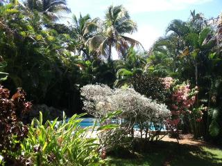 Lovely 3 BR, 3 Baths with Private Pool and Beautif - Sosua vacation rentals