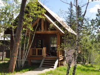 Iron Horse Cabin (Formerly Frontier Cabin) - Lead vacation rentals
