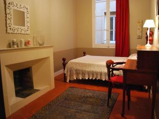 Appartamento caratteristico nel cuore della cittá - Aix-en-Provence vacation rentals