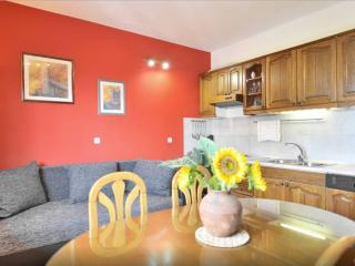 Apartmani Jukic 1 - Central Dalmatia Islands vacation rentals