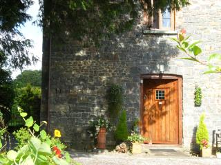 Lovely 1 bedroom Cottage in Llandovery - Llandovery vacation rentals