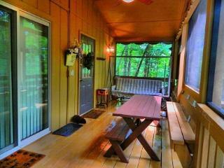 Beautiful 3 bedroom House in Helen with Dishwasher - Helen vacation rentals