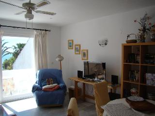 Casa del Loro Bailador - great sea views! - Estepona vacation rentals