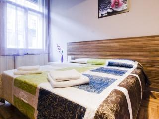 Kalman Apartments near Parliament - Budapest vacation rentals