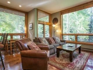 Millrace Cascade Village - Vail vacation rentals