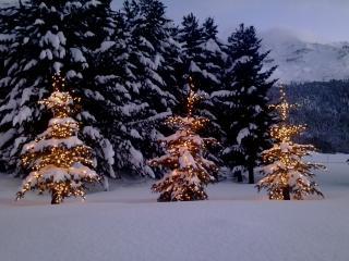 Apartment near St. Moritz - Saint Moritz vacation rentals