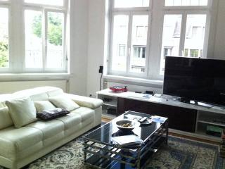 Perfect Room in the Heart of Zurich - Zurich vacation rentals