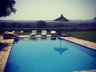 Bright 5 bedroom Essaouira Villa with Private Outdoor Pool - Essaouira vacation rentals
