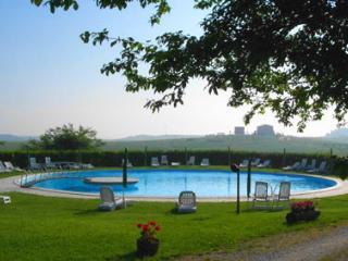 Aprtment in farmhouse Vesta close to Siena - Siena vacation rentals