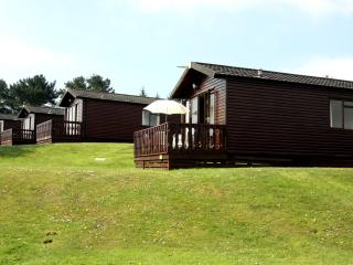 Holiday Pine Lodge saundersfoot newly refurbished - Saundersfoot vacation rentals