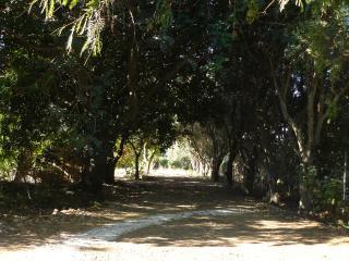 casa nella riserva naturale del Belice-Menfi - Menfi vacation rentals