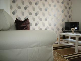 Perfect 3 bedroom Borgo val di Taro Condo with Internet Access - Borgo val di Taro vacation rentals