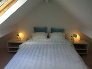 New guesthouse with sauna near sea - Alkmaar vacation rentals