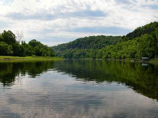 Nettie's River Retreat~World class trout fishing near the confluence of the White & North Fork rivers. - Harriet vacation rentals