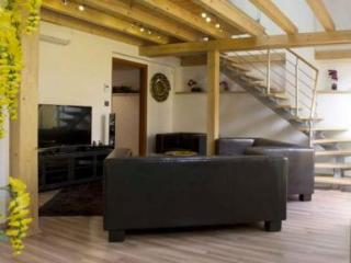 Luxury 4 Bedroom Apartment - Air conditioned & Terrace - 4906 - Prague vacation rentals