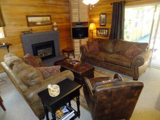 Cozy, warm interior; Close to Heavenly & Shopping - Zephyr Cove vacation rentals