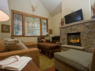 Mountain thunder 3 bedroom - Ski In - Downtown - Breckenridge vacation rentals