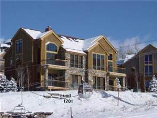 TERRACES 1201 - Telluride vacation rentals