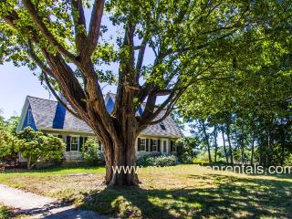DOUGC - Historic, Arrowhead Farm, Wifi, Some A/C - West Tisbury vacation rentals