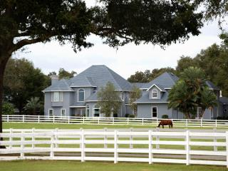 Luxury 7 Bedroom Great House on Equestrian Resort - Ocala vacation rentals
