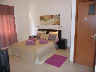 Quiet 1br spacious Pinsker apartment near the beac - Tel Aviv vacation rentals