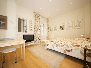 Charming Apartment Near Musee d'Orsay in Paris - Amsterdam vacation rentals