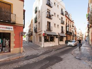 [667] Lovely 1 bedroom apartmet, center district - Seville vacation rentals
