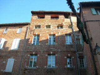 Nice Condo with Internet Access and Wireless Internet - Albi vacation rentals