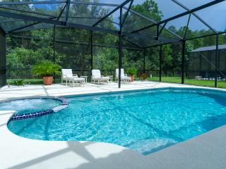 Bella Vida Luxurious Executive Close To Disney - Kissimmee vacation rentals