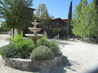 Borolo room - B&B - Paso Robles vacation rentals