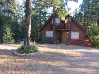 Blue Jay Vista Mountain Chalet - Winter Wonderland - Flagstaff vacation rentals