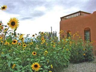 Casa Luminosa Casita Cabin - Taos Area vacation rentals