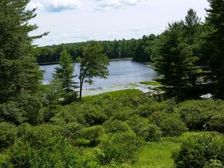 Beautiful House with Internet Access and Dishwasher - Narrowsburg vacation rentals