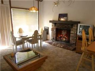 Incline Village 1 BR-2 BA Condo (5AT) - Incline Village vacation rentals