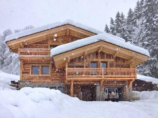 Black Diamond Lodge - Rhone-Alpes vacation rentals