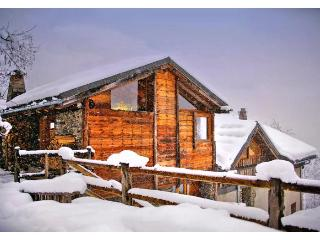 Chalet Le Medaillon - Rhone-Alpes vacation rentals