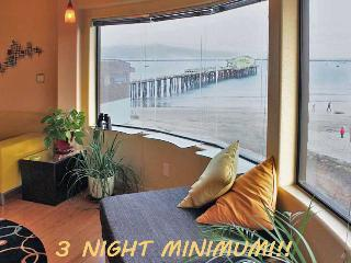 Exotic Tropical MAVERICKS Beachfront LOFT! - San Francisco Bay Area vacation rentals