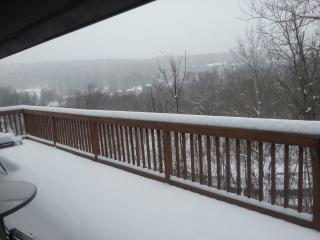 Winter Rental For Upstate New York - Hunter vacation rentals