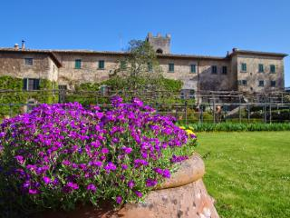 Apartment in Gaiole in Chianti, Chianti, Tuscany, Italy - Gaiole in Chianti vacation rentals