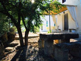 La Gineta - Casa del Tío Miguel - Alcala la Real vacation rentals