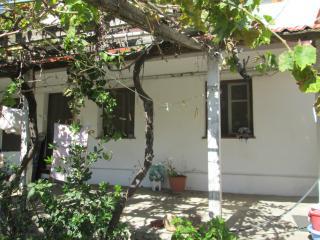Skala Eressos Summer House quite/ 7 Min walk to se - Mytilene vacation rentals