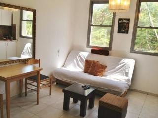 Lovely and Comfortable 1 BR on Ben Yehuda (apt.11) - Tel Aviv vacation rentals