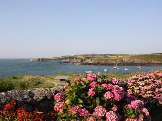 Perfect 3 bedroom House in Cemaes Bay - Cemaes Bay vacation rentals